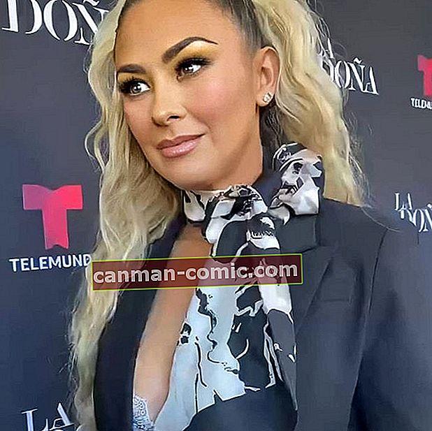 Aracely Arámbula (Aktris) Biografi, Wiki, Suami, Tinggi Badan, Berat Badan, Kekayaan Bersih, Keluarga, Karir, Fakta