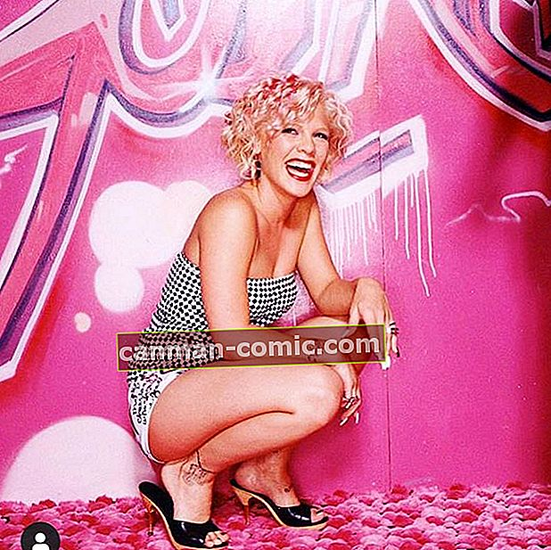Pink (Penyanyi) Wiki, Bio, Umur, Tinggi, Berat, Suami, Anak, Kekayaan Bersih, Karir, Fakta