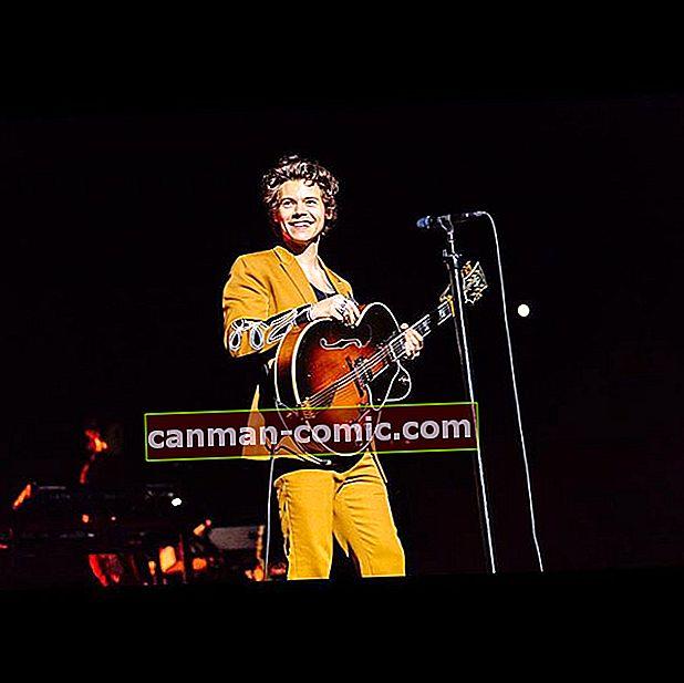 Harry Styles (One Direction) Wiki, Bio, Umur, Tinggi, Berat, Teman wanita, Keluarga, Kerjaya, Nilai Bersih, Fakta