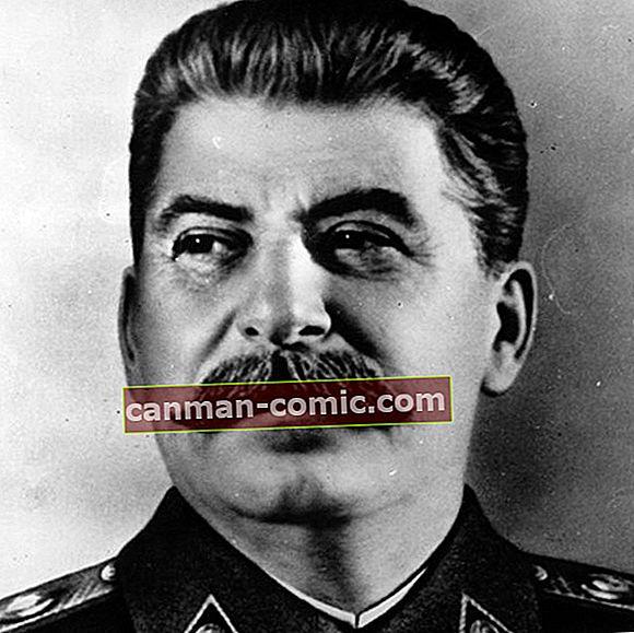Йосип Сталін (політик) Вікі, біографія, вік, зріст, вага, дружина, діти, національність: 12 фактів про нього